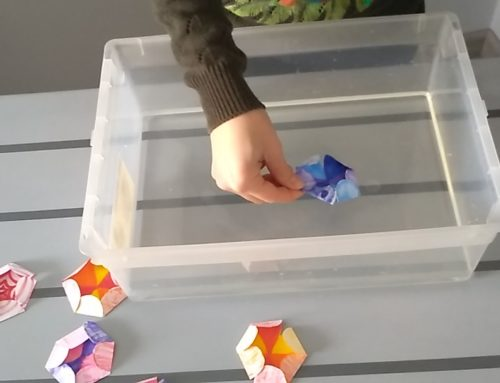 Fiori colorati e magia!